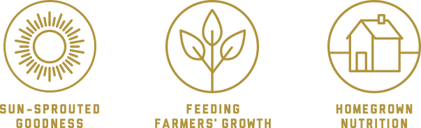 Sun-sprouted goodness | Feeding farmers' growth | Homegrown nutrition